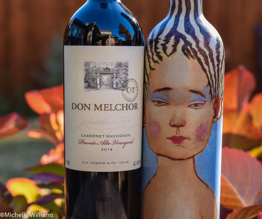 Two Gorgeous Chilean Cabs You MustDrink